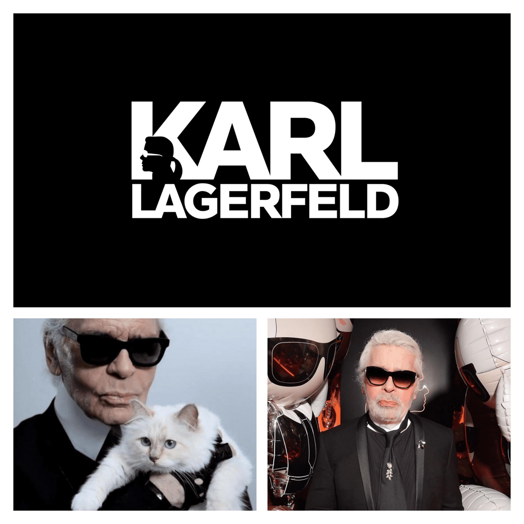 Karl_chat_identite_visuelle